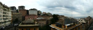 genoa by wishhh