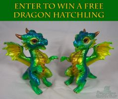 Enter to win FREE Custom painted Dragon Hatchling by The-SixthLeafClover