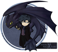 Sherlock and Night Fury by toshiyanemura
