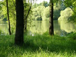 Near The Pond 1 by WanderingSoul-Stox