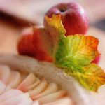 a taste of Autumn by hayzy