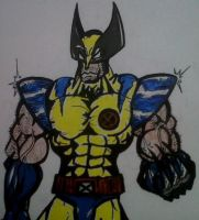 Wolverine by dark-es-will