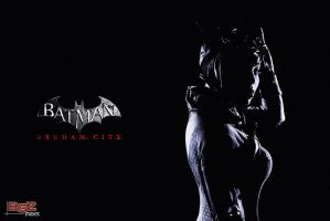 Catwoman on the Prowl by gstqfashions