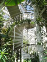 Spiralling above the canopy by EmoCat26
