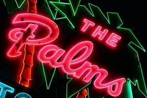 The Palms by redwolf