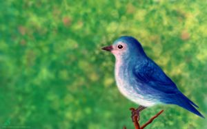 Liitle blue bird wallpaper by SubhrajitDatta