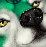 Icon commish (updated) by pyro-helfier