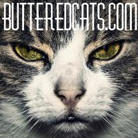 butteredCat by ButteredCats
