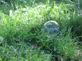 Bubble in the Grass by DragonoftheEastblue