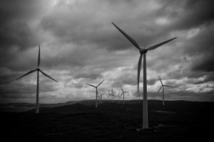 Albany Wind Farm by alvse