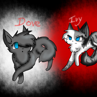 Ivypool and Dovewing by JayKeyra