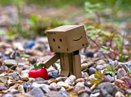Danbo found an apple. by Pamba