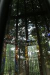 Stained Glass Forest by ebjeebies
