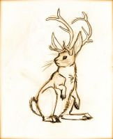 Jackalope by Lilac-Cat