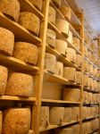 Wall of Cheese by bandoodie