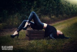 lay down by silverwolfieofficial