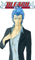 Grimmjow Unmasked by kimmy77