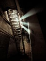 Down to the Cellar by Shreeb