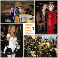 2014-1019-001 Ghent convention-Star Wars by czoo