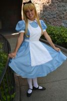 Alice at the Castle by Anime-Ray