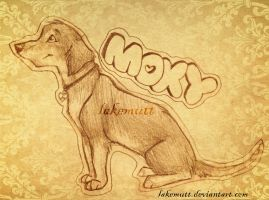 Mox the Dox by lakemutt