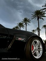 Z06 Clip by Swanee3