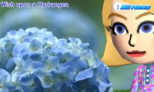 When you wish upon a... hydrangea? by AnnaTheWonderGirl01