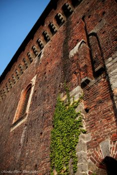 Castello Sforzesco by atinka