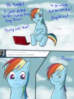 Ask Rainbow Dash 01 by ShinZm1911