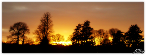 A Westonbirt Sunset Orig. by sylver-shadow