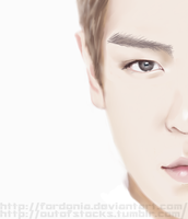 T.O.P by fordonia