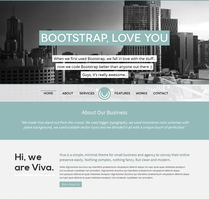 Viva - HTML5 Responsive Unique Theme on Bootstrap by DarkStaLkeRR