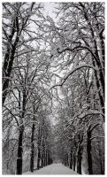 Snow Cathedral by Sulejman