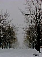 How Hushed the Street by JMPorter