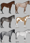 Fundraising Adopts :: 4/6 Available Reduced! by JValdis