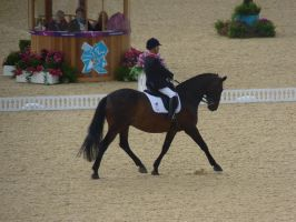 Paralympic Dressage - Great Britain - Lee Pearson by Belle-Vaux