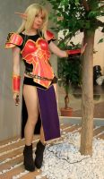 Blood elf - completed armor by YurikoSeira