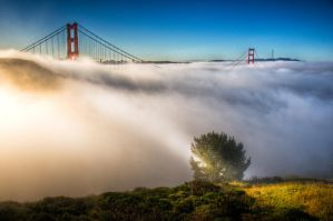 San Francisco, The Magic of Golden Gate by alierturk