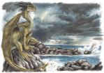 Dragon by the Sea by T-Tiger