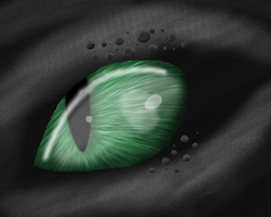 Realistic Night Fury Eye  by EternityOfNightmares