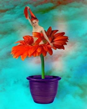 Self Raising Flower by ChrissieCool