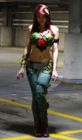 Poison Ivy 1 by SACScosplay