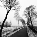 remember last winter by augenweide