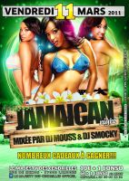 Jamaican Night Flyer by gar21nett