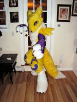 Renamon fursuit by ThreadandClaws