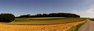 Country Landscapes in Panorami by LucienWittwer