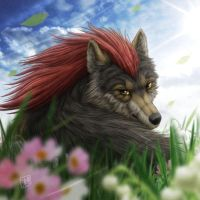 Handsome Wolf by SheltieWolf