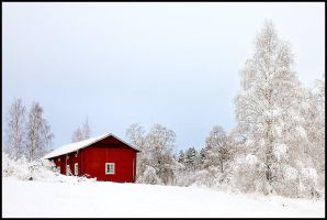 Winter Day by eswendel