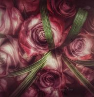 Rose Trance by creativemikey