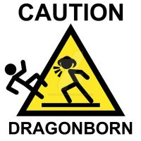 Skyrim Dragonborn Warning Sign by goblinworkshop